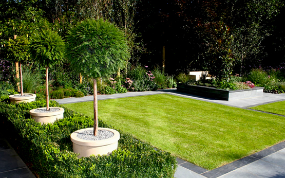 Entretien jardin d coration for Entretien jardin wissous