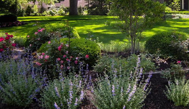 Jardin espaces verts jardin d coration for Entretien jardin geneve