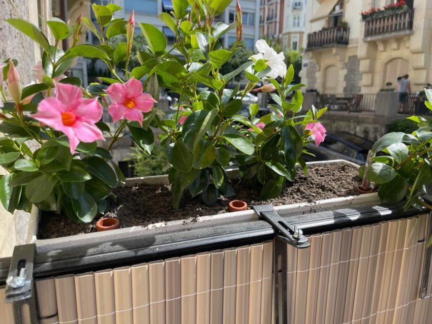 Plantations bacs, plantes, fleurs – Genève, Lausanne