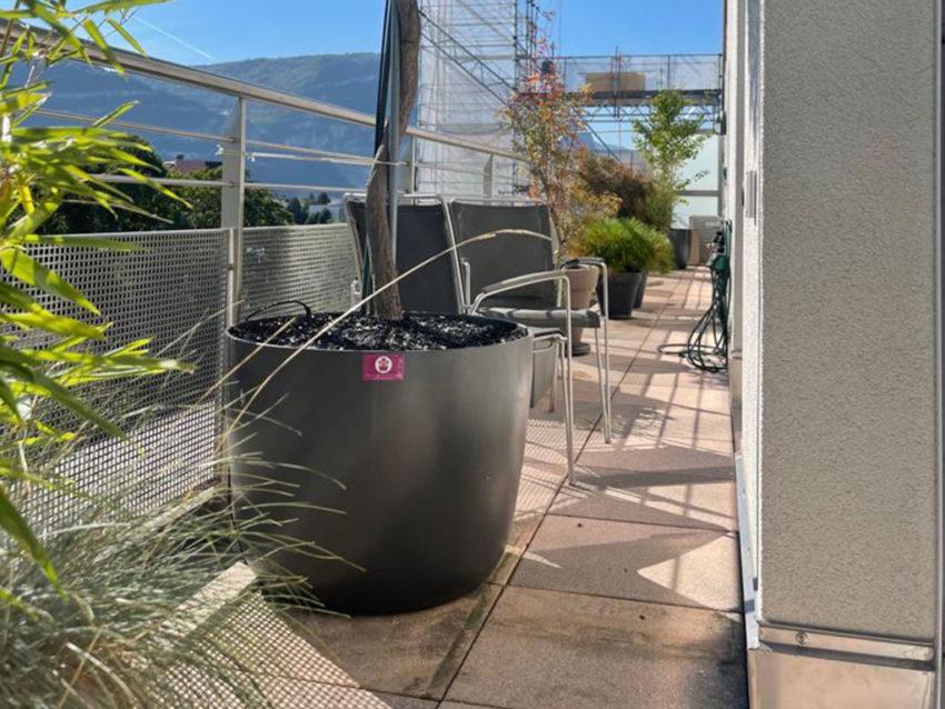 Plantation pots, bacs, jardinières balcon – Thonex, Genève