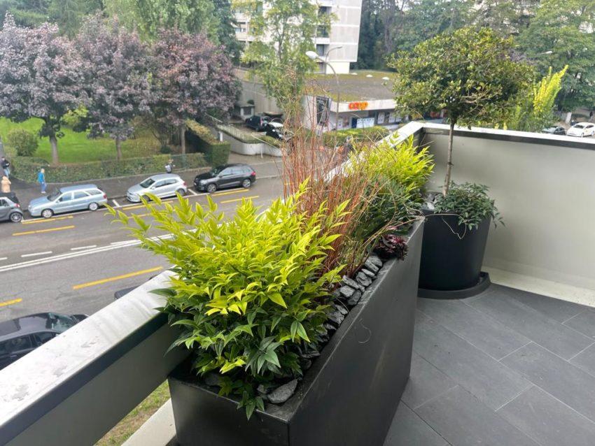 Plantation bacs balcon – Genève