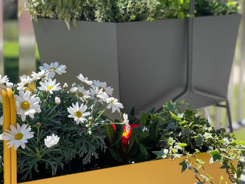 Plantation pots, jardinières balcon – Vernier