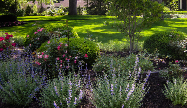 entretien jardin espaces verts geneve